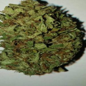 Buy UK Cheese marijuana online ,Buy 420 online,buy legal weed online,order weed online, order 420 online,420 for sale