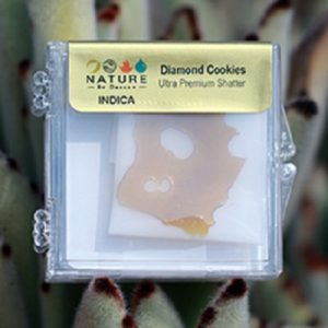 Buy Diamond Cookies Shatter