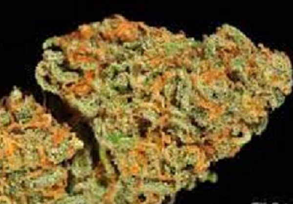 Buy real weed online,buy weed online, marijuana for sale;kush for sale ,cannabis for sale ,hash oil for sale ,edibles for sale,buy legal weed online,order weed online, order 420 online,420 for sale,buy weed edibles online,